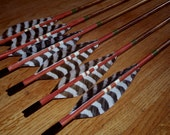 Crested Hunting Arrows
