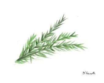 Rosemary art original watercolour painting herb art kitchen decor, miniature painting 6 x 4 inch
