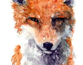 Fox - Watercolor Art Print - 8 x 10