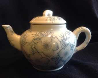 Adorable Blue and White China Teapot