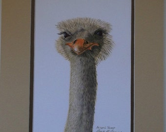 Ostrich with Attitude, Print of original mixed media work on paper, double matted.