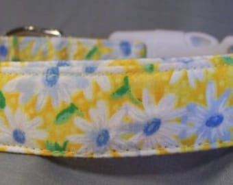 Little Daisy Flowers on Yellow Dog Collar