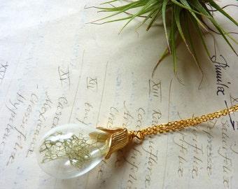 Lichen Terrarium Necklace - Glass Teardrop Pendant - Botanical Specimen