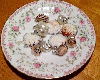 Set of 12 Handmade Sea Shell Charms