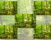 5 Magical Fantasy Digital Overlays Mostly for Fairies