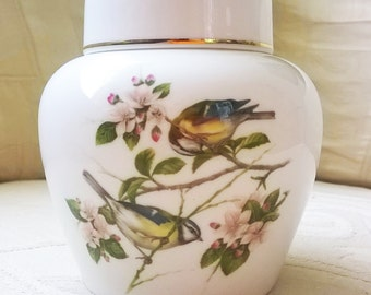 Elegant Coalport 'British Birds' Porcelain Ginger Jar