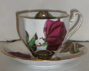 Royal Standard English Rose Cup and Saucer  Free Standard Shipping in the U.S.