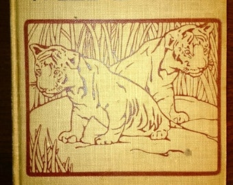 The Babyhood of Wild Beasts by Georgia M. McNally first edition from 1917.