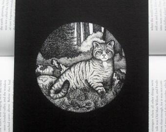 Scottish Wildcat Pen and Ink Art Print