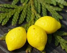 Opaque Yellow Lemon Beads Czech Glass Lemon Beads Glass Fruit Beads Lemon Glass Beads Czech Lemon Beads Czech Glass Beads 14mm X 10mm 4pc