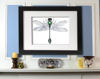 Original Dragonfly Mechanical Insect Concept Drawing