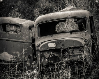 Abandoned Trucks by the river, 11x14 matted photograph