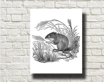 Mouse Silhouettes Printable Graphics Instant Download AN13041