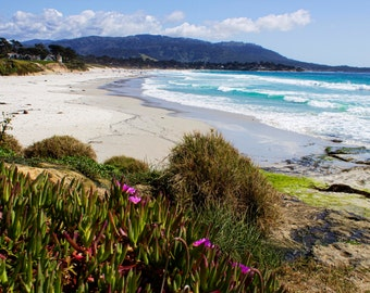 Carmel by the Sea, Mountains, Coast, Ocean, Ice Plants, Pink Flowers, Pebble Beach, Central Coast, California