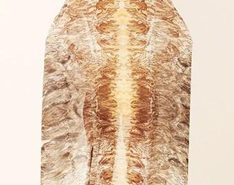 Cutwork Feather Scarf