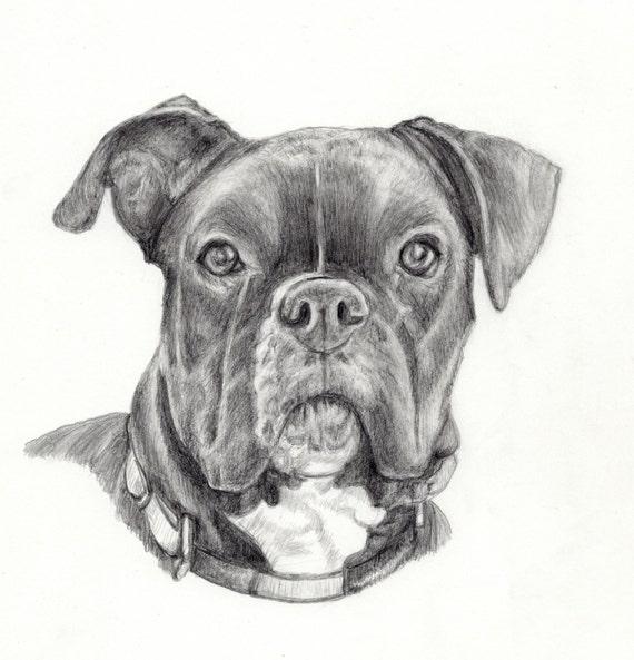 Articles similaires portrait personnalis pour chien dog dessin personnalis s pet portrait - Dessin chien boxer ...