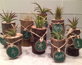 Rustic wood stump log air plant tillandsia wedding bridal shower favors decor with chalkboard tag for name or table number- Customizable!