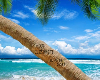 Romantic Beach Decor - Names Carved on a Tree - Personalized Wedding Gift - Anniversary Gift - Palm Photo pp103