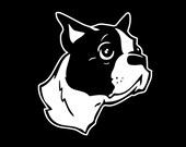 115 Boston Terrier Decal