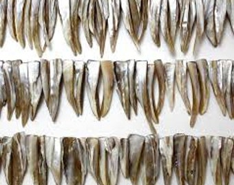 Shell Spike Beads - Natural - Pack 50