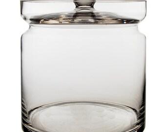 Glass Apothecary Jar Plant Terrarium Container #GAJ121