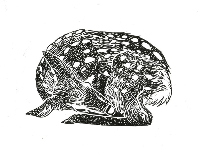 Deer Fawn Sleeping Linocut Original Illustration Block Print Black
