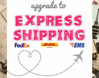 Internationa Express Shipping
