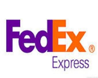 FedEx Overnight to USA