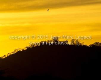 Sunset - Fine Art Photography