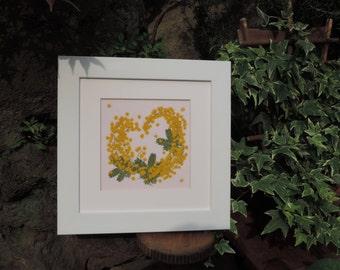 Mimoza, Framed Pressed flowers Art