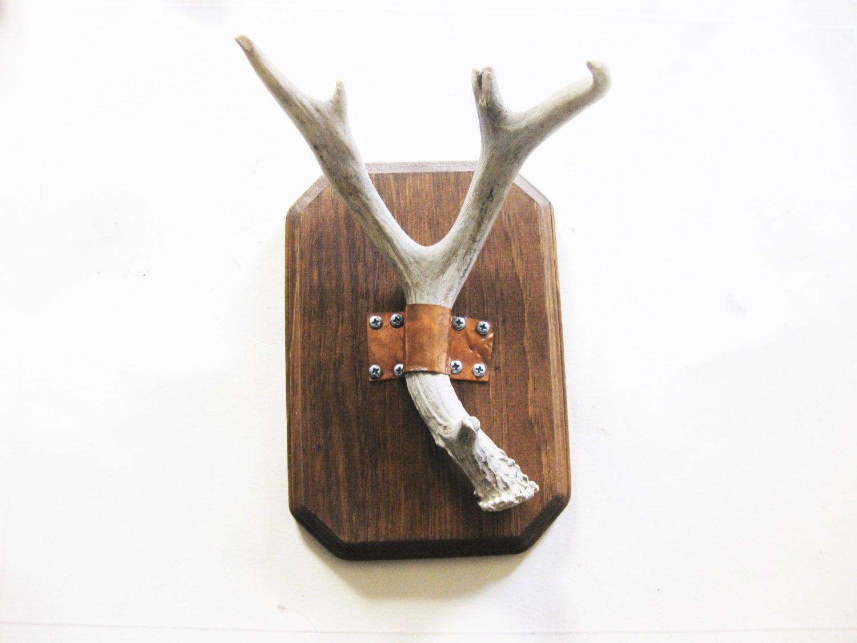 deer antler wall mounted jewelry holder by blackhorseshogun