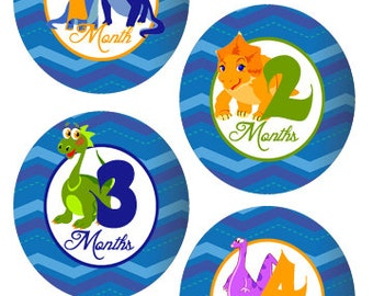 Dinosaur Baby Month Stickers Baby Onesie Month Stickers Baby Milestone Stickers Baby Monthly Stickers Bodysuit Stickers