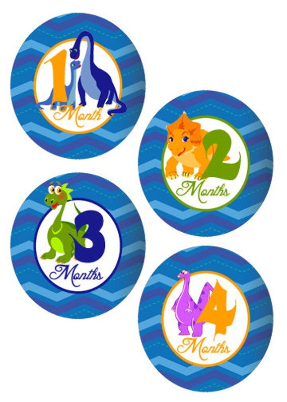 18 Month Stickers: Dinosaur Baby Month Stickers Baby Onesie Month Stickers