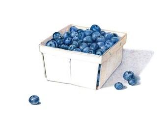 Blueberries / Food Illustration / Art Print