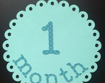 12 Baby Month Cards