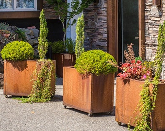 Price Reduced! Weathering Steel Planters