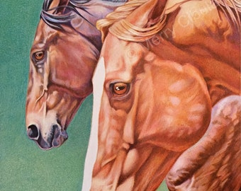 """Equine Art Horse Drawing. This is a limited edition print of an original equine color pencil drawing.  It is entitled """"The Match""""."""