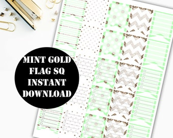 Mint Gold Flag Sq Printable Planner Stickers // Erin Condren Printable / Plum Paper Planner / Planner Insert Instant Digital Download 00011