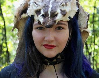 American badger headdress by Lupa - full hide badger headdress totem dance costume for shamanic ritual and dance