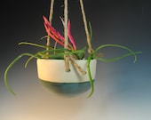 Hanging Planter - Ceramic Plant pot- Handmade Green - Wheel Thrown - One of a Kind