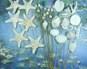31 Seashell Starfish Pearl Stems  - Mermaids Pearly Bouquet - Stems for Wedding Bouquet Bridal Bouquet or Centerpieces