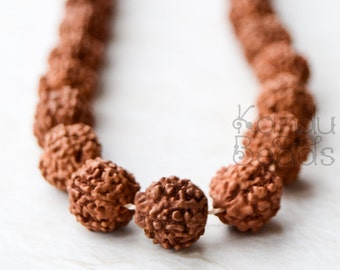 Rudrashka Nut Mala beads Round 14 or 8mm Full Japa Mala Meditation beads Strand (109 beads)