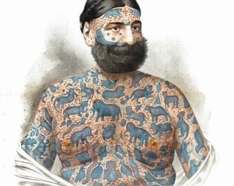 antique victorian illustration circus performer elephant tattooed man print DIGITAL DOWNLOAD