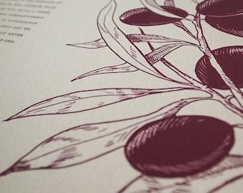 Ketubah Giclée Print by Jennifer Raichman - Olive Branches