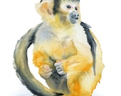 Monkey Watercolor Painting Giclee Print 5x7 - Squirrel Monkey Art - Animal Painting - Jungle