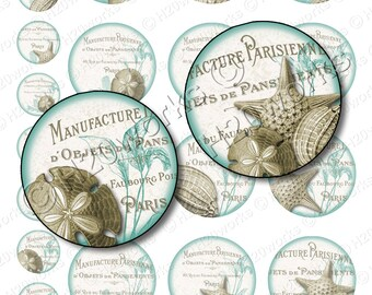 Shabby Chic Shells, Circles - Aqua, Mint, Tan, Taupe, Paris, Seashells, Beach, 1x1 & 2x2, Country French, Printable, INSTANT DOWNLOAD