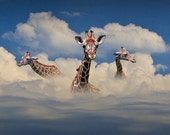 Heads above the Clouds with 3 Giraffes along with their long necks are the tallest living terrestrial animals No.10102 Wildlife Photograph