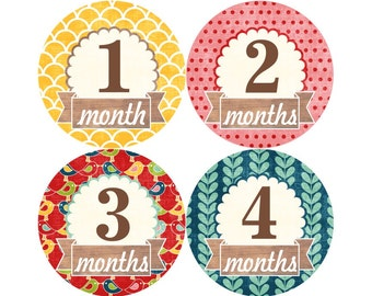 1st Year Baby Month Stickers, PLUS Just Born, Baby Girl Milestone Stickers, Monthly Bodysuit Stickers, Spring Summer Birds Red Yellow 010G