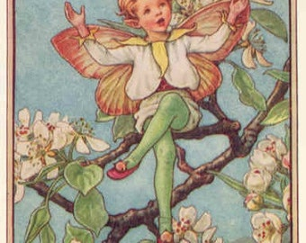 The Pear Blossom Fairy - Cross stitch pattern pdf format