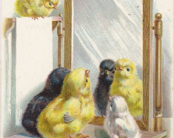 Easter Wishes- 1900s Antique Postcard- Spring Chicks Looking into Mirror- Reflection- Edwardian Decor- Raphael Tuck- Paper Ephemera